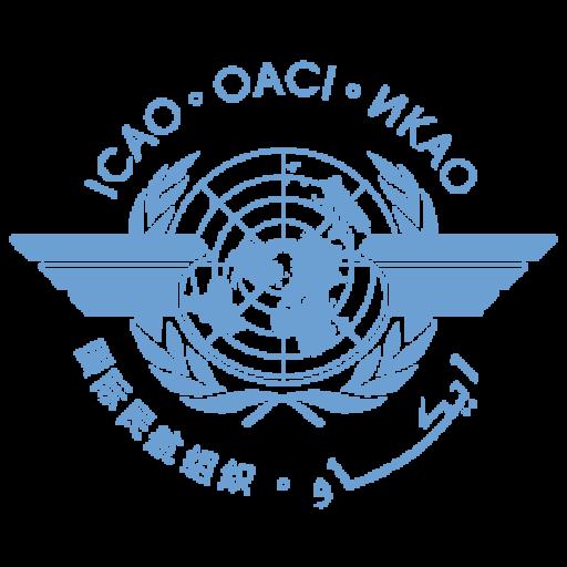 Авиатренажёры и учебные центры России